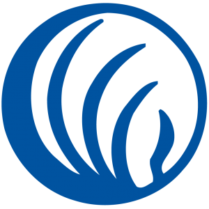 NAMI Butte logo